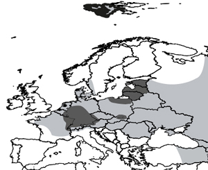 Approximate geographical distribution of Em in Europe. Grey areas: areas where E. multilocularis presence has been reported; dark grey areas: known hostpots of human AE (here, hotspots are defined as areas with human AE prevalence more than 10-100 x higher than the regional surroundings, see Said-Ali et al. 2012; hence, average prevalence greatly varies from one hostpot to the other); white areas: areas where the parasite has not been reported. After Vuitton & Giraudoux, in press